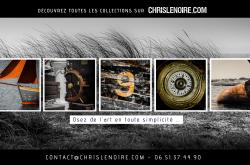 Exposition à la Galerie Chris Lenoire, Carnac (56)
