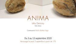 Anima – solo show Lélia Demoisy